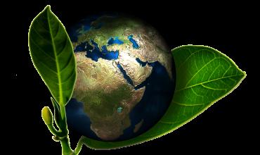 Grazie ai bassi consumi e all'utilizzo delle energie rinnovabili, si riduce l'emissione di sostanze inquinanti nell'atmosfera